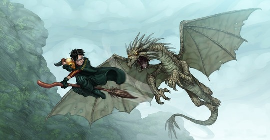 Harry Potter on his broomstick clutching a dragon's egg being chased by a Horntail Dragon